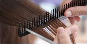 productos-peluqueria-peinado-pelo