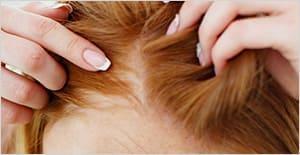 productos-peluqueria-tratamientos-pelo